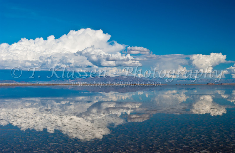 Chloride pools with desert reflections near Amboy, California, USA.