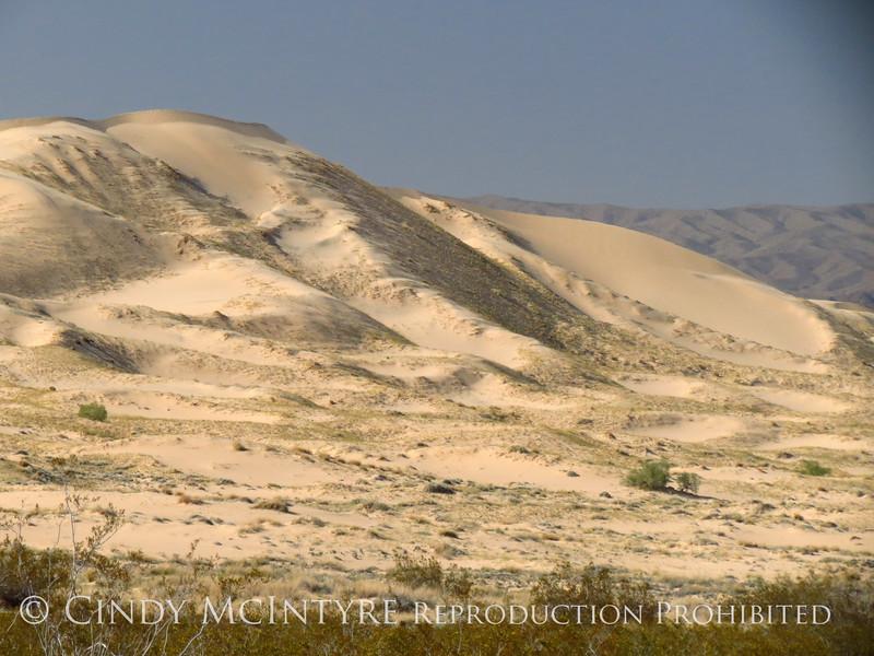 Kelso Dunes, Mojave Natl Preserve, CA (1)