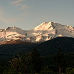 mount-shasta-evening