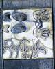 Ray Charles<br /> 3/6/81