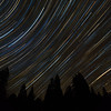Colorful Star Trails