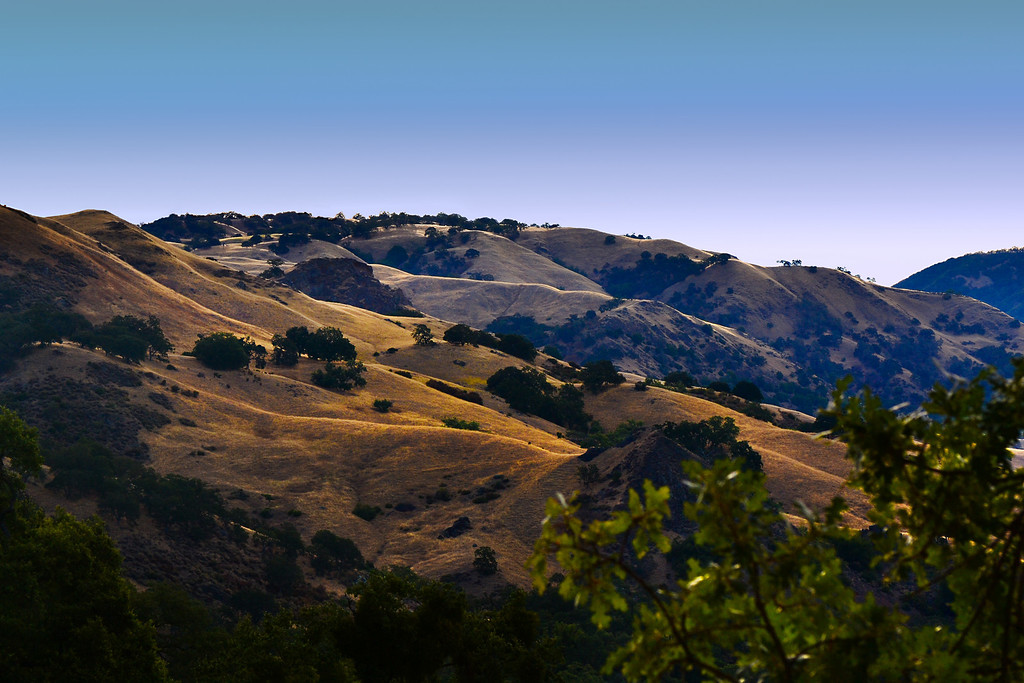 Sunol on an August morning.