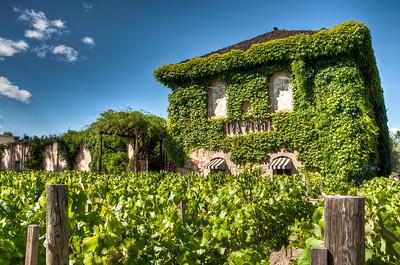 tra-vigne-vineyard