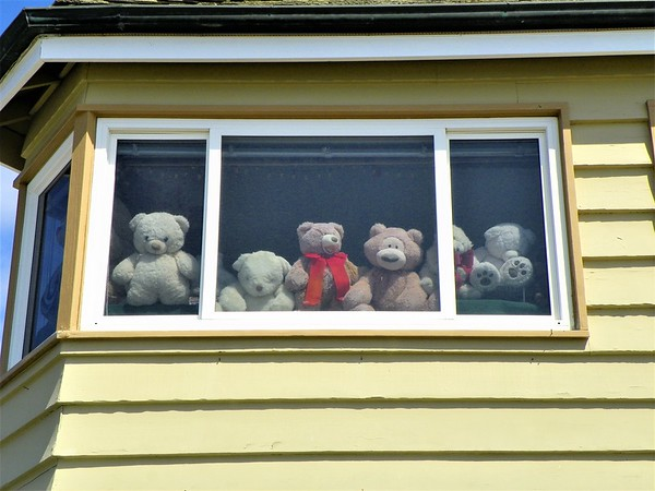 Bear House - 2
