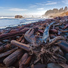 redwood logs on Crescent Beach