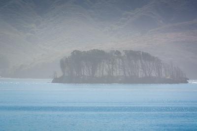 Point Reyes-1425