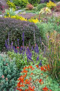 Botanical Gardens-0926