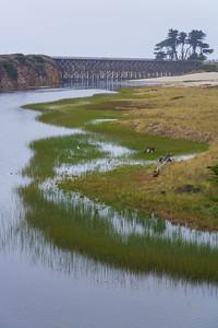 Fort Bragg-0629