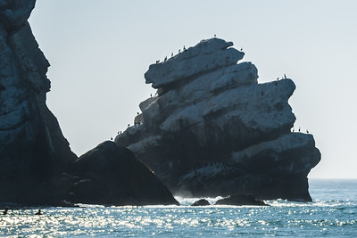 Morro Bay-6489
