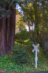 Road to Guerneville-0412