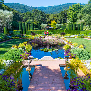 Filoli House and Garden_San Jose-8994