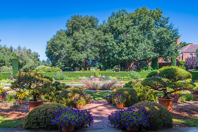 Filoli House and Garden_San Jose-9005