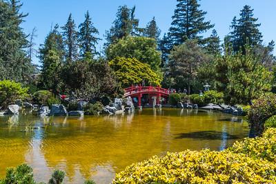 Japanese Friendship Garden-0982