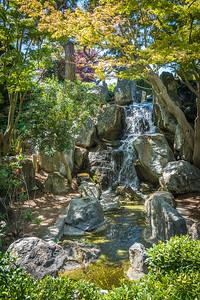 Japanese Friendship Garden-0993