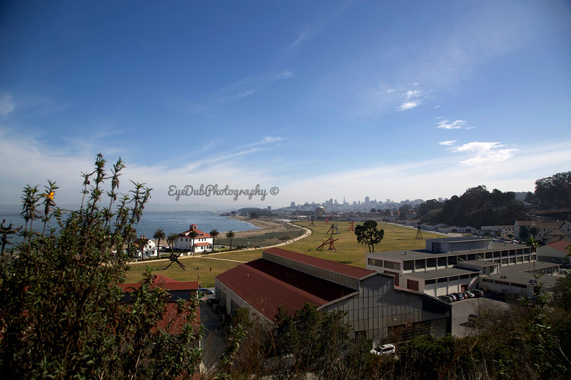 Crissy Field from the Presidio