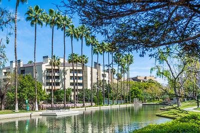 Avenue of the Arts_Costa Mesa-3246