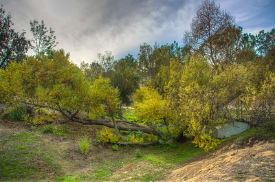 Canyon Park-5471_2_3_4_5_HDR