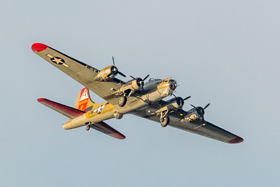 B-17 Flying Fortress-6980
