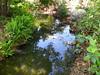 Arboretum -7