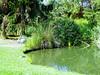 Arboretum -13