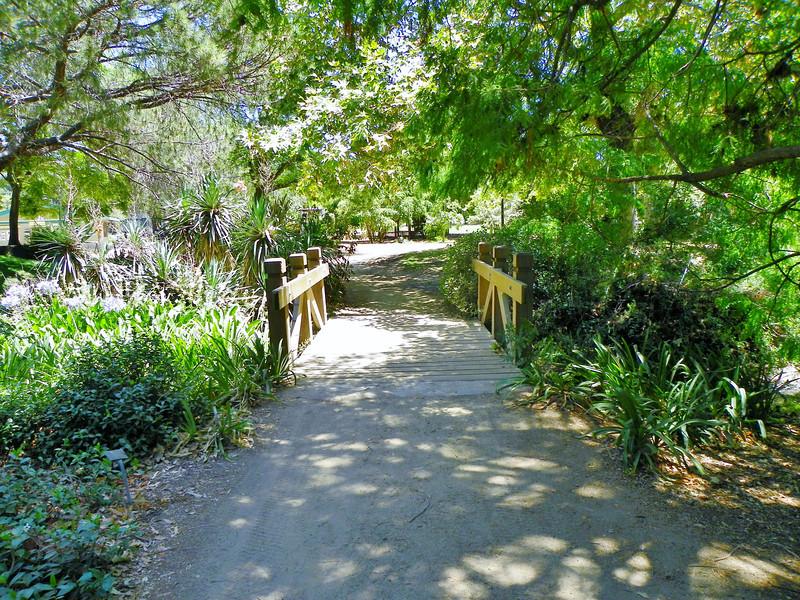 Arboretum -52