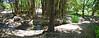 Arboretum -49
