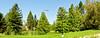 Arboretum -15