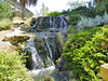Arboretum -6