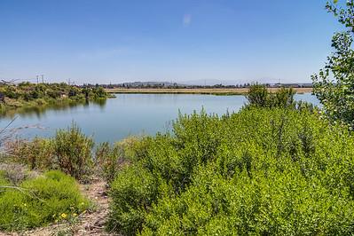 Anaheim Coves-0424_5_6