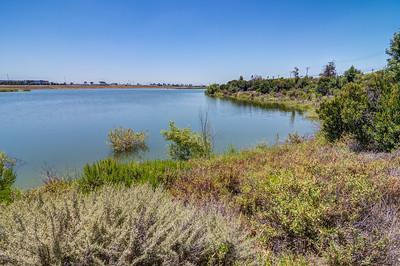 Anaheim Coves-0427_8_9