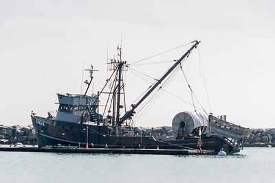 Dana Point-4687