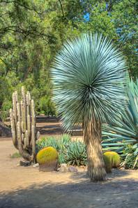 Fullerton Arboretum-7585_6_7_8_9_HDR
