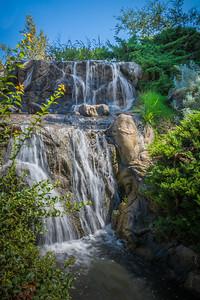 Fullerton Arboretum-7651