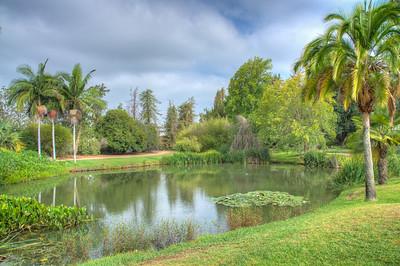 Fullerton Arboretum-7501_2_3_4_5_HDR