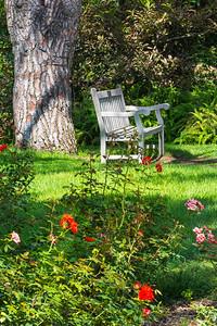 Fullerton Arboretum-7650