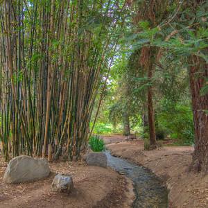Fullerton Arboretum-7470_1_2_3_4_HDR