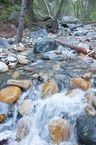 Holy Jim Trail Feb11-6470