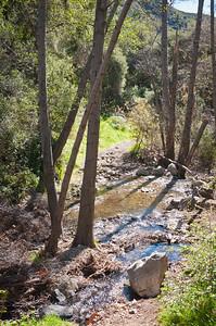 Holy Jim Trail Feb11-6591