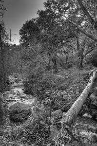 Holy Jim Trail Feb11-6469_8_7_HDR