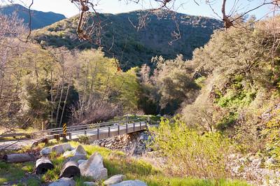 Holy Jim Trail Feb11-6480