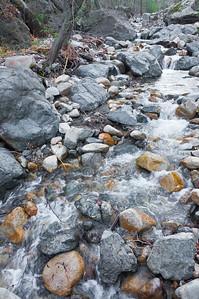 Holy Jim Trail Feb11-6474