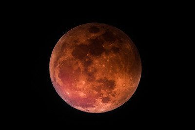 Super Blue Blood Moon-1335