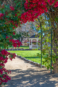 Irvine Ranch Historic Park-9693