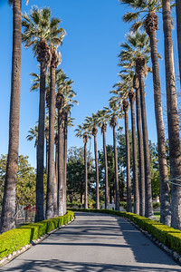 Irvine Ranch Historic Park-9669