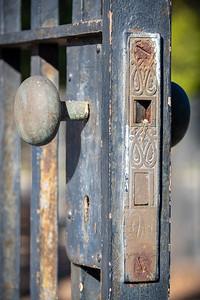 Irvine Ranch Historic Park-9720