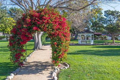 Irvine Ranch Historic Park-9692