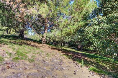 Knollcrest Park_Irvine-9620_1_2