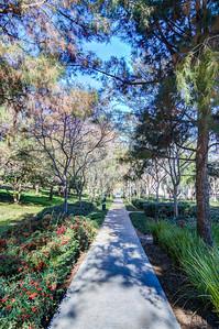 Knollcrest Park_Irvine-9530_1_2