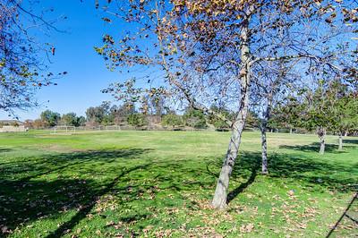 Knollcrest Park_Irvine-9590_1_2
