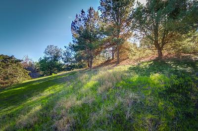 Knollcrest Park_Irvine-9593_4_5
